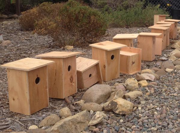 bird houses finished