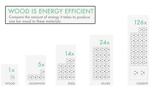 wood-energy
